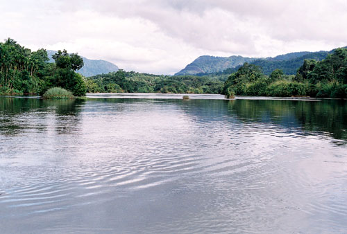 Periyar River infront of Periyar River Lodge